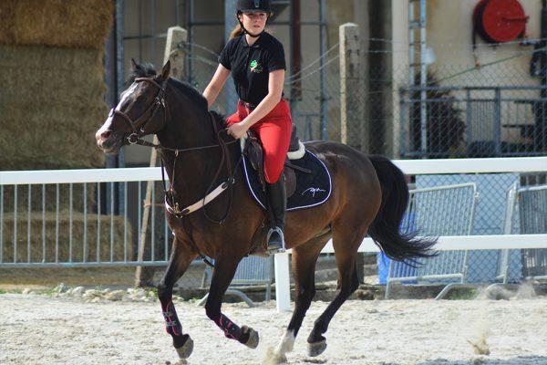 Equimov – L'airbnb du cheval