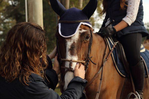 Pourquoi l'équitation est un sport intéressant et enrichissant