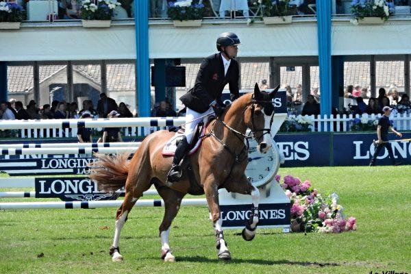 Top 5 des plus beaux chevaux de sport :